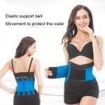 back belt support - nayble ltd